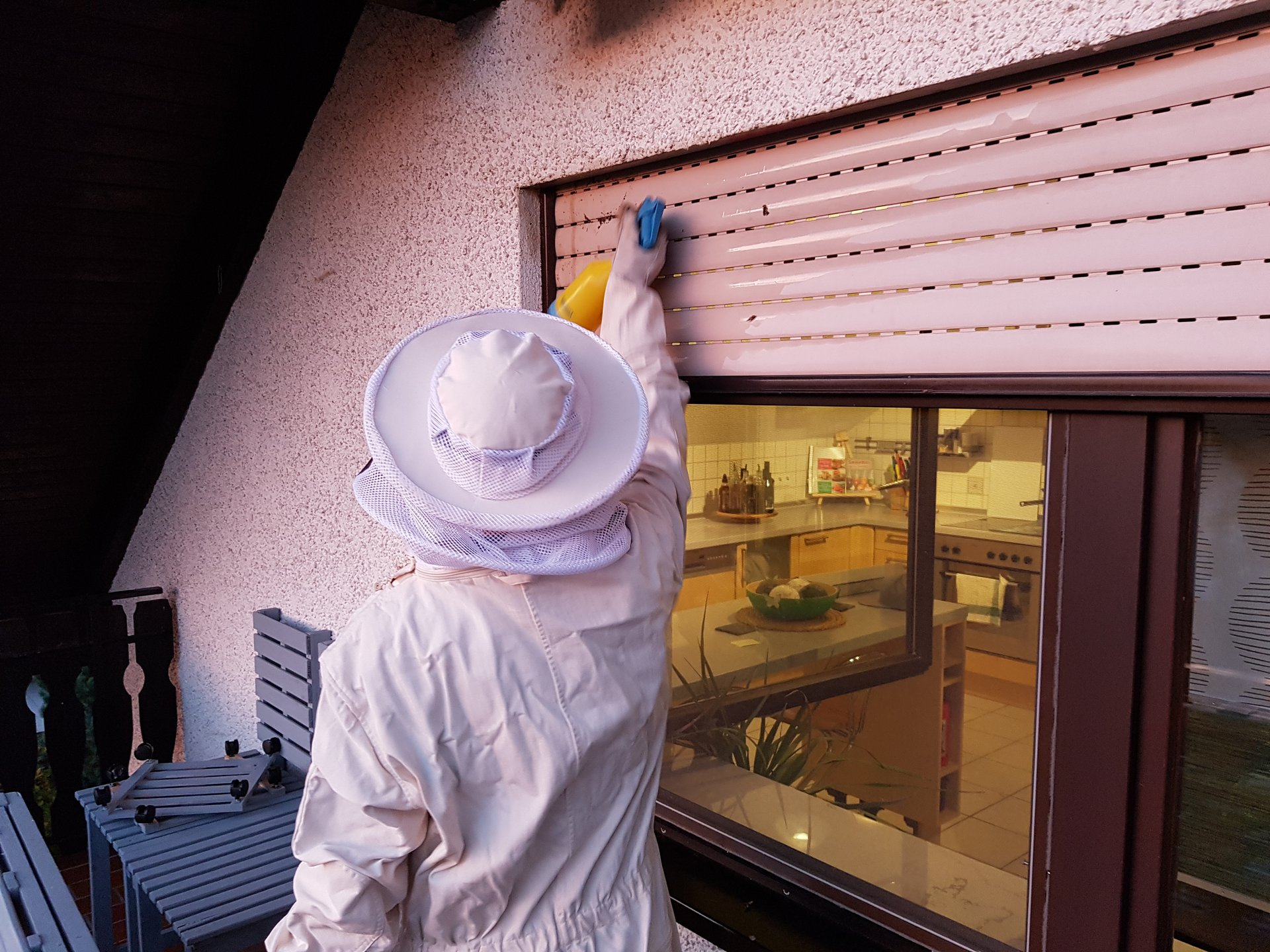 freiwillige feuerwehr illerberg thal insekten. Black Bedroom Furniture Sets. Home Design Ideas